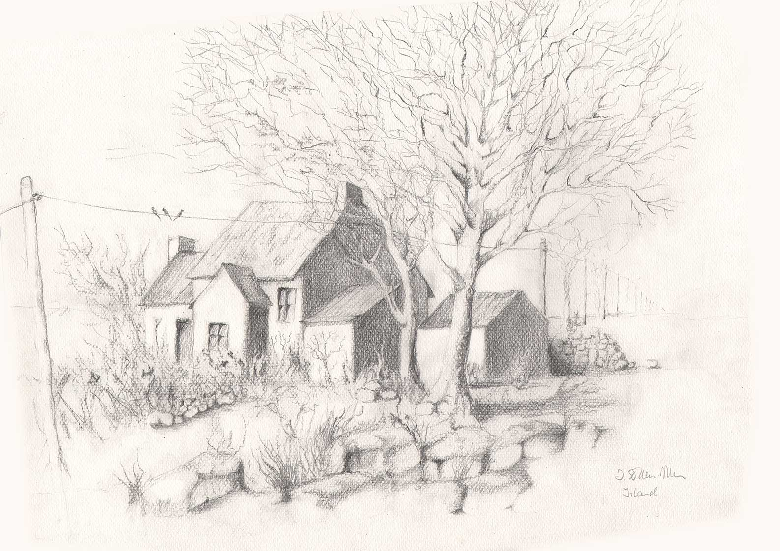 Irisches Haus, Bleistiftzeichnung