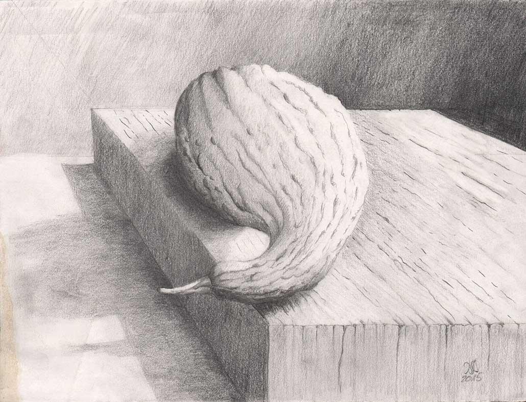 Stillleben mit Kürbis, Bleistift