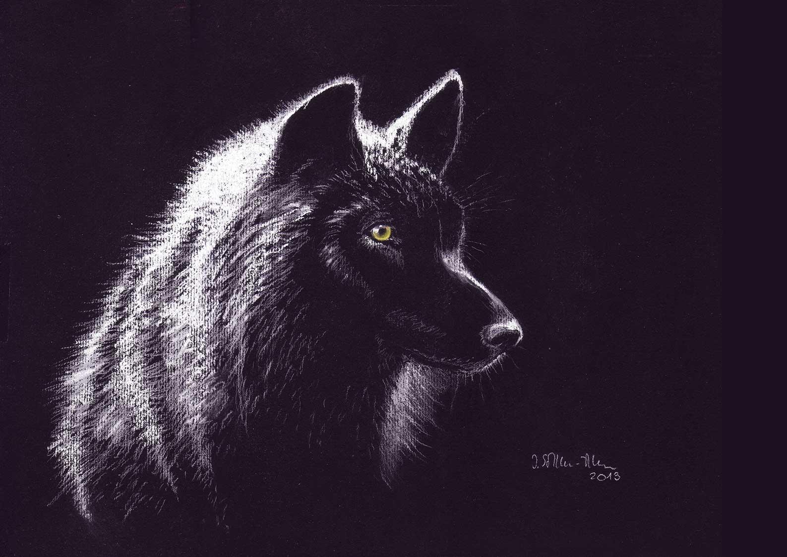 Wolf, Kreidezeichnung mit Pastellkreide