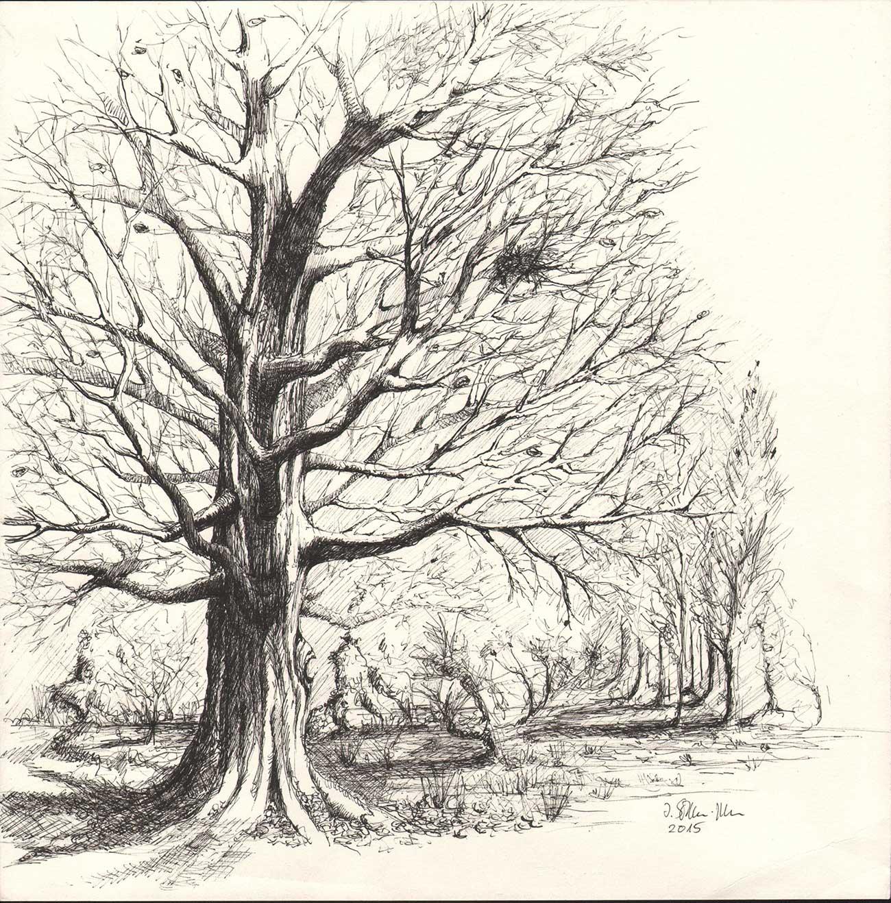 Baum, Kugelschreiberzeichnung