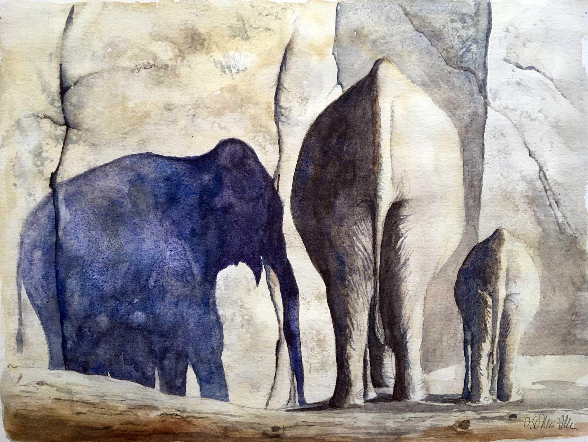 Elefanten am Abend