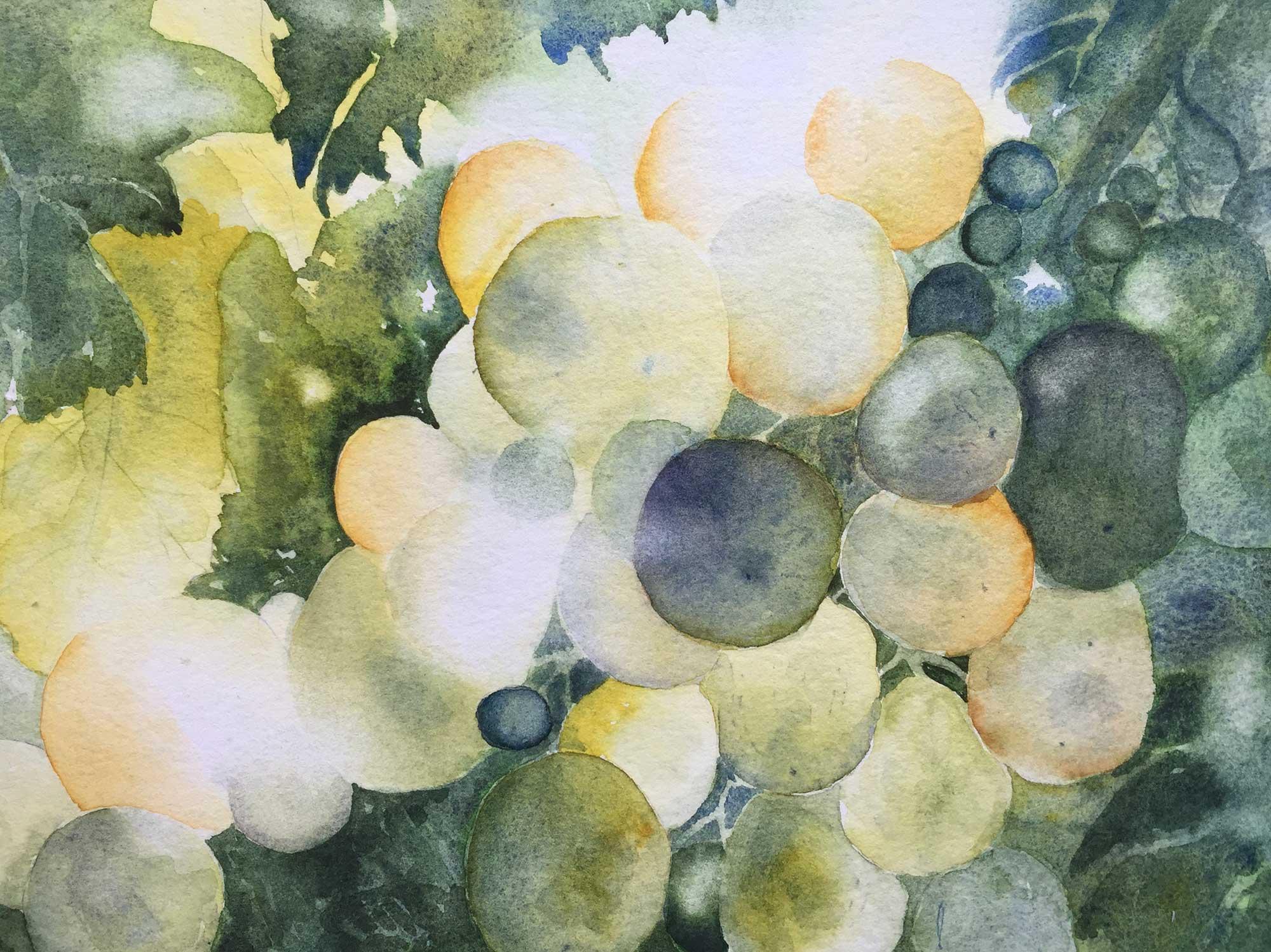 Reife Früchte, Aquarell